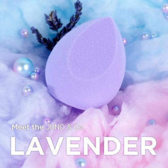 JunoCo Lavender 1