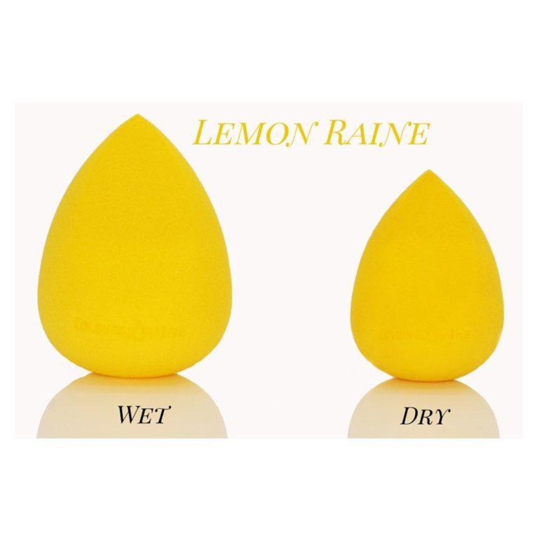 Lemon Raine Beauty Sponge Dry & Wet