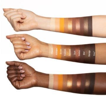 Melt Cosmetics Rust Palette Arm Swatches