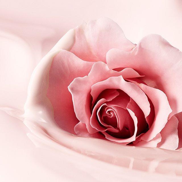 Laura Mercier Skin Essentials Collection Rose with cream Promo