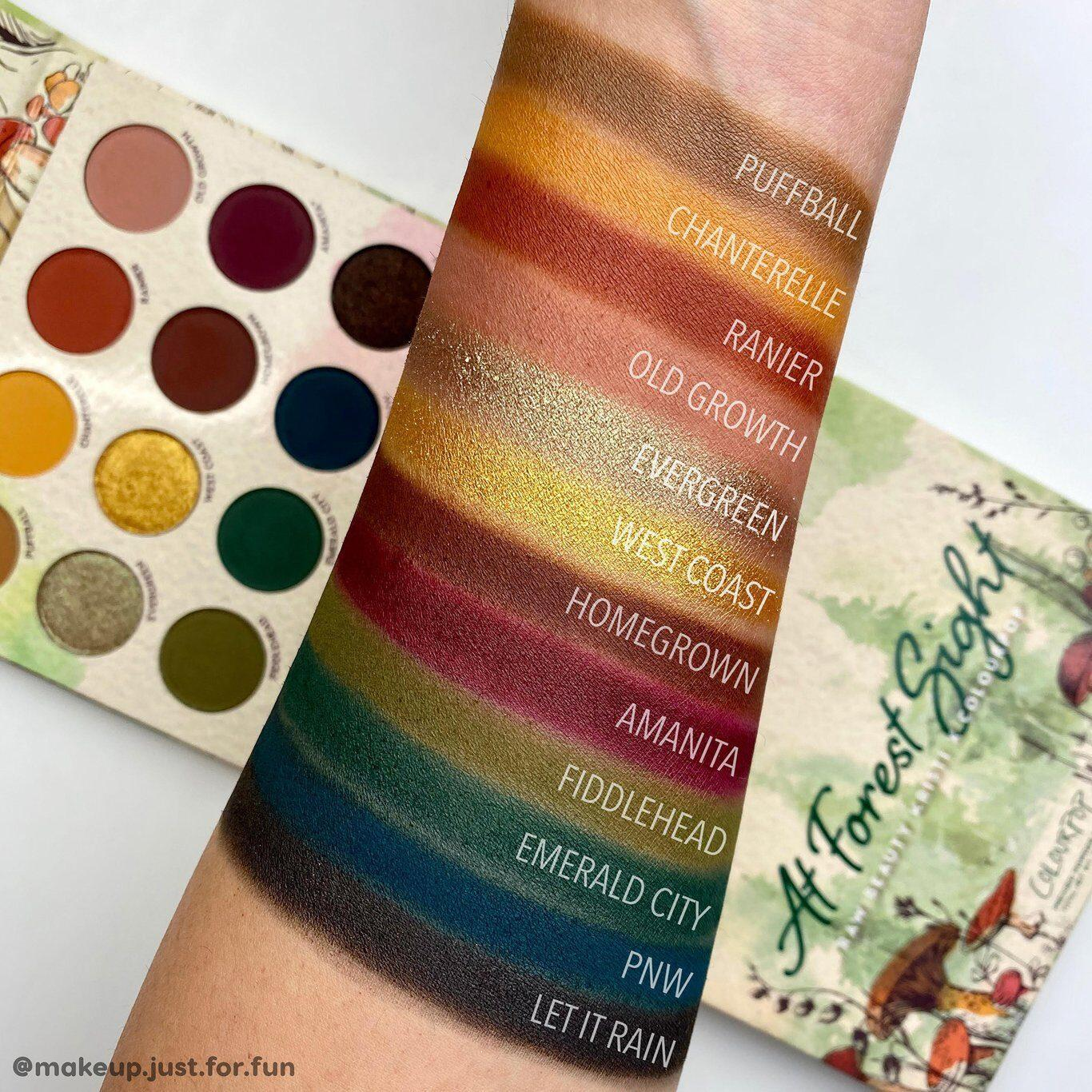 Raw Beauty Kristi x Colourpop At Forest Sight Shadow Palette Arm Swatches