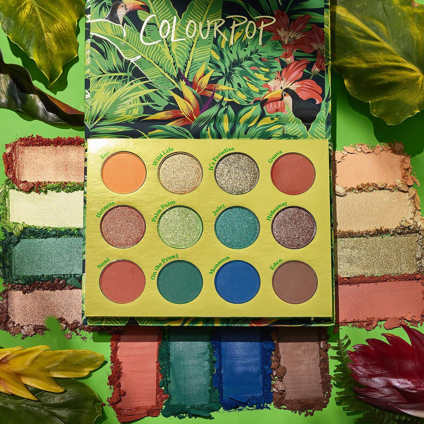 Colourpop Lush Life Collection Lush Life Shadow Palette With Crahses Promo
